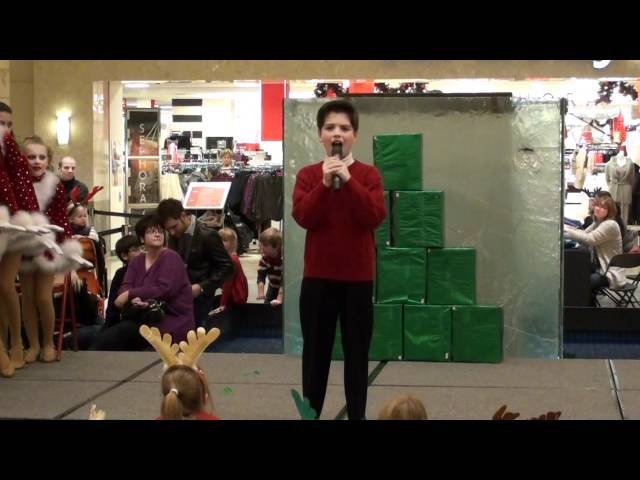 Shane Treloar & Prunzik's Pittsburgh's Broadway Stars - White Christmas