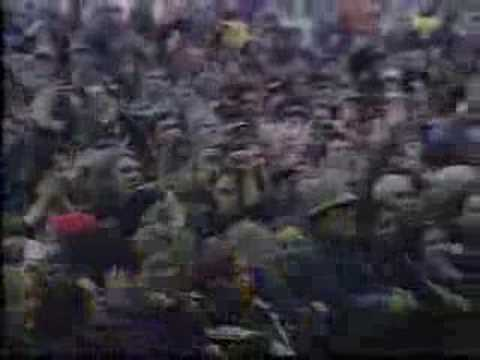 The Seahorses - Love is the Law Glastonbury 1997