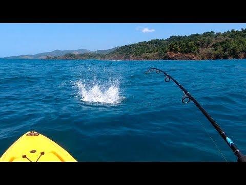 TEM MAIS PEIXE DO QUE ÁGUA!!! Inacreditável! Pescaria.