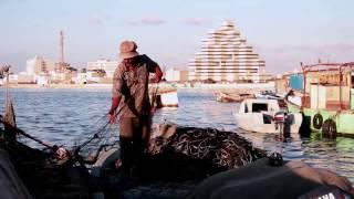 Libya In Motion –Official Trailer