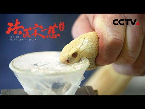 中國-法醫宋慈