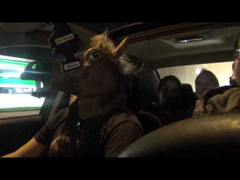 Horse Mask While Driving Lol video