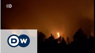 La Palma'da orman yangını