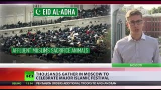 Download Holy Day: Thousands of Muslims to celebrate major Islamic festival Eid al-Adha 3Gp Mp4