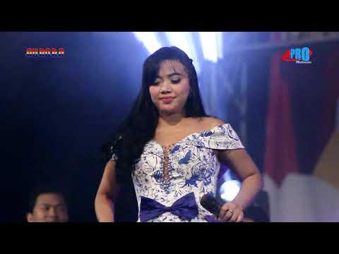 Download SISKA VALENTINA LAGI GOYAH - AURORA LIVE GRESIK Mp4 baru
