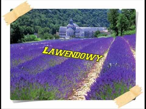 # -2 Wiewióry ! - Lawendowy (manchester) video