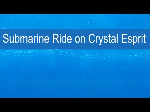 Cruise Critic Trys Out Crystal Cruises' Submarine