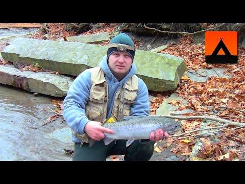 Steelhead Fishing at Erie, PA - November 2013