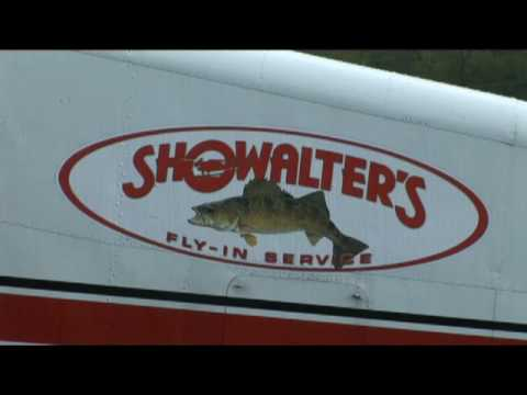 Showalter's Air Fleet