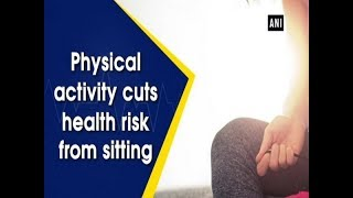 Physical activity cuts health risk from sitting - Health News