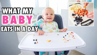 WHAT MY BABY EATS IN A DAY // HEALTHY NO MEAT MEALS // 10 MONTHS BABY