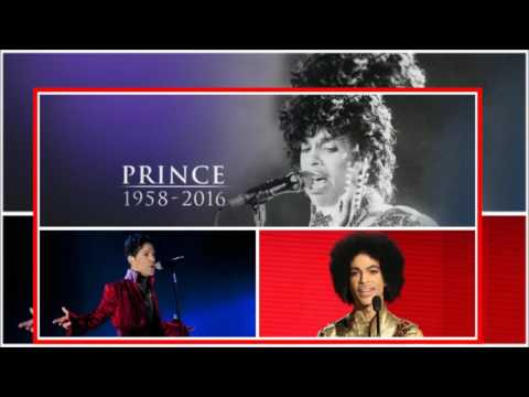 Prince - Erotic City (Vinyl) extended version by Grego 91