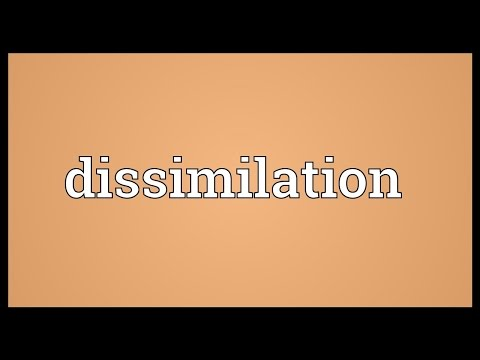 Header of dissimilation
