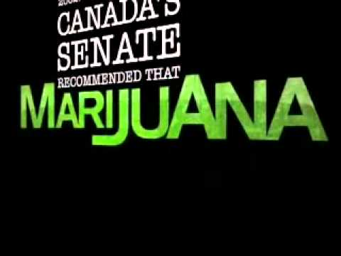 Pro Marijuana / Anti Prohibition Made-for-TV Ad
