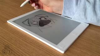 Pug Speed Drawing on reMarkable 4K UHD
