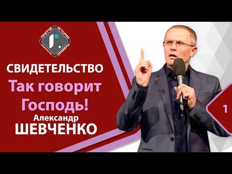 Свидетельство А Шевченко