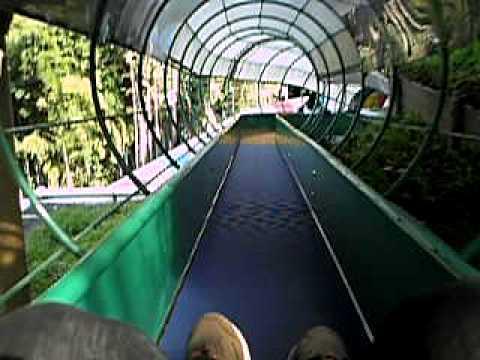 日本平動物園 ローラースライダー