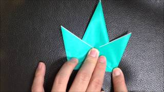 8.how To Fold Bodies Of A Simple Animal | Origami Box