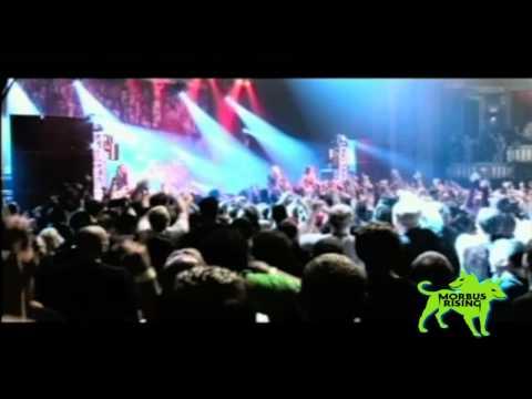 Disturbed - Stupify (Live)