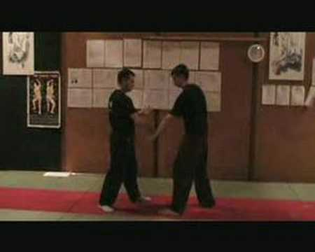 southern praying mantis kung fu conditioning drill Image 1
