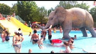 Slides for kids in water park with big elephant. Funny from KIDS TOYS CHANNEL