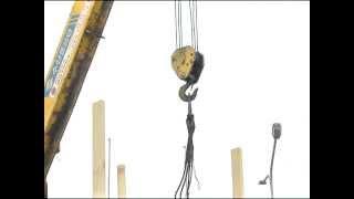 сюжет лесные традиции 2013 04