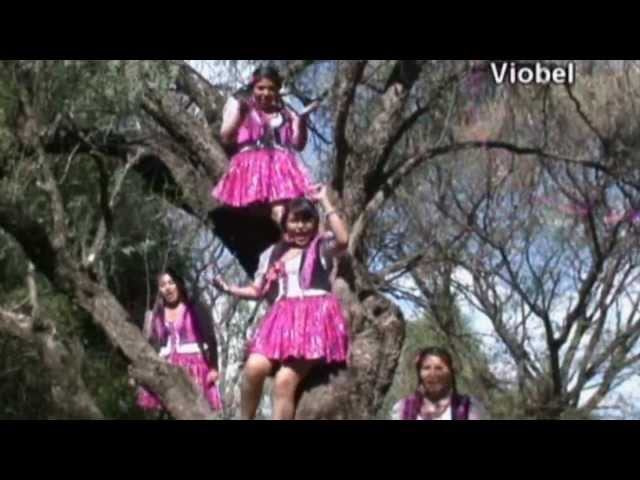 ☆ ღ ☆ LAS SABROSITAS  2012 ☆ ღ ☆  (MEGA MIX)  【HD】