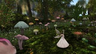 Birth of a Region in Second Life