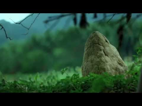 Nuwebe Cinemalaya 2013 Full Trailer