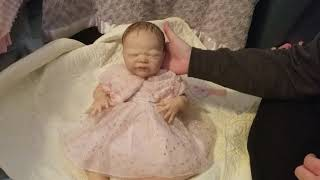 Reborn baby box opening SOLE Laura Lee Eagles kit!