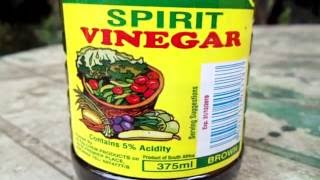 how to remove weeds with viinegar
