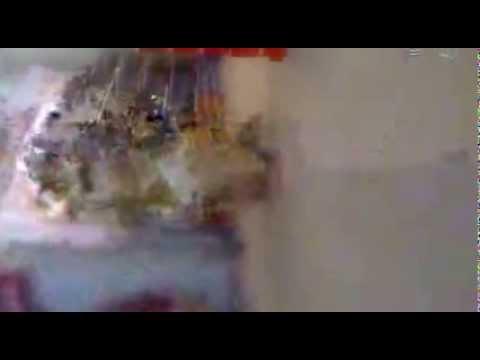 Desi Mujra Full Sexy&funny Dance video