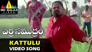 Erra Gulabilu - Kattulu Doosuku Video Song || Erra Samudram Movie | Narayana Murthy