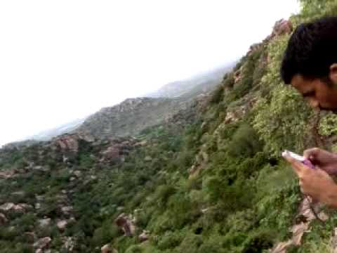 Nasha Star Poonam Pandey, Sunny Leone And Katrina Kaif Very Hot Forest Trip Rare Video video