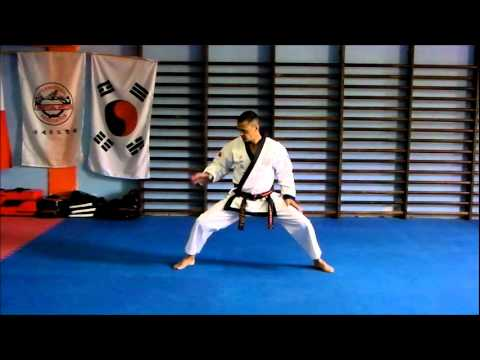 Basic stances in Tang Soo Do Image 1