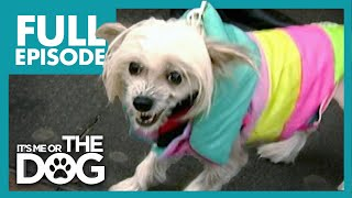 The Dog From Hell: Tallulah | Full Episode | It's Me or the Dog