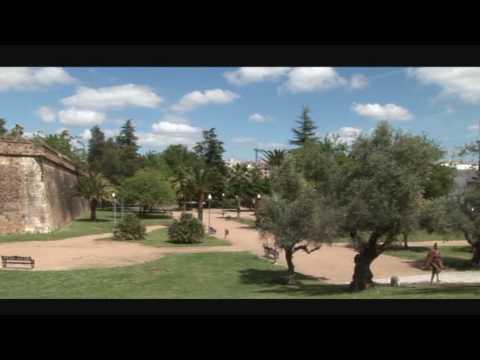 Wellingtons siege of Badajoz, spain