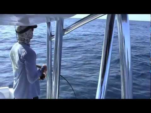 Sarasota Florida Boating & Fishing