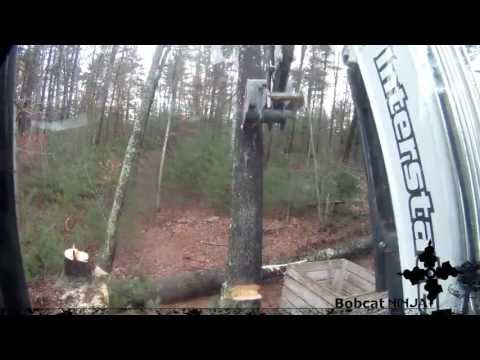 Cutting Trees With Chainsaw And Excavator video