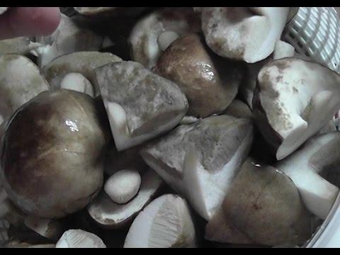 Грибы маринованные -  подберезовики на зиму