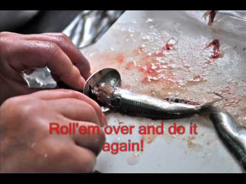 How to prepare fresh anchovies!