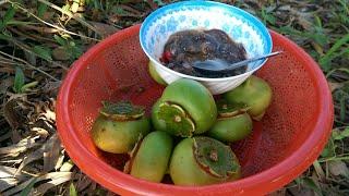 NKMT | Bần chua mắm sống đậm chất miền tây | muốn ăn phải trèo lên cây mà hái