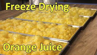 Freeze Drying Orange Juice