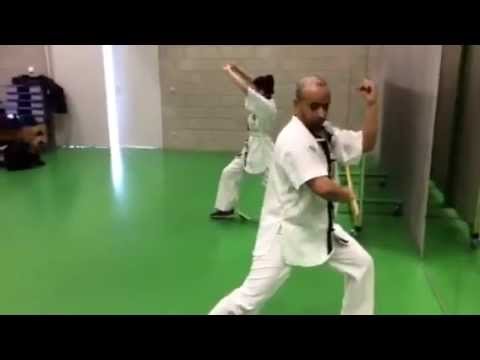 kung fu baji quan traditionnel