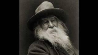 Watch Wilco Walt Whitman