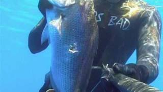 SPEARFISHING IONIO GREECE