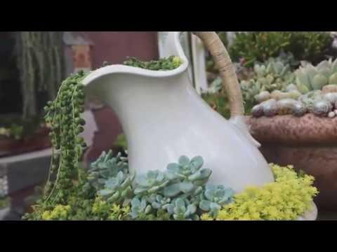 Разлитые  клумбы в саду  30 примеров дизайна клумб на даче