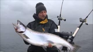 тролинговая рыбалка видео симы