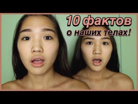 10 ФАКТОВ О ТЕЛАХ БЛИЗНЕЦОВ! // Kagiris twins