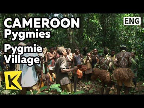 【K】Cameroon Travel-Pygmies[카메룬 여행-피그미]피그미 마을 정글 체험/Pygmie Village/Jungle/Sap/House